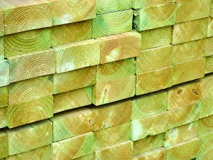 Carcassing Green Treated (C16-C24) 100mm x 300mm per metre